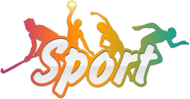 cerfa-12699-formulaire-déclaration-éducateur-sportif