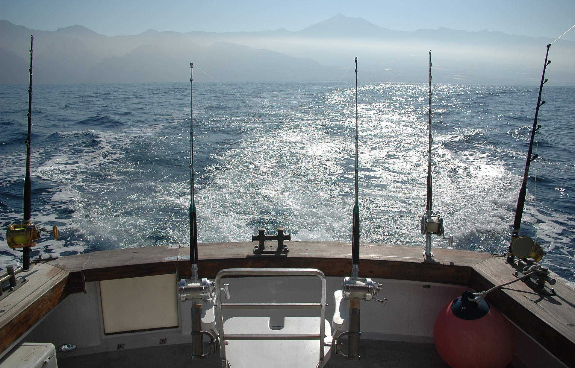 autorisation-pêche-thon-rouge